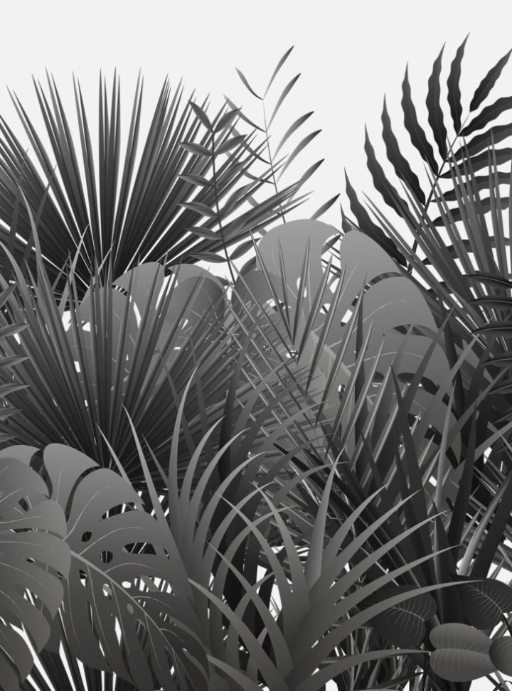 jungle_726x980_acf_cropped